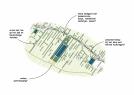 Libau presenteert ruimtelijke bouwstenen voor de energietransitie in  het Westerkwartier